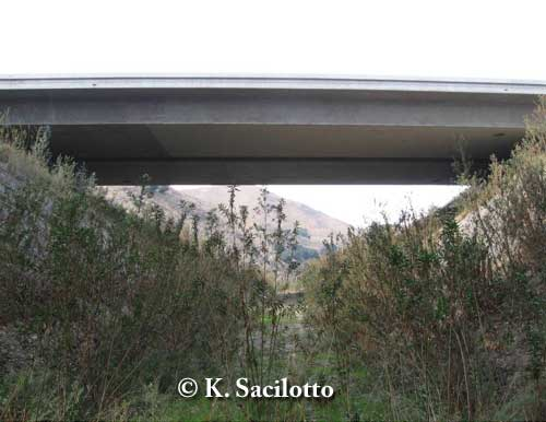 Wildlife bridge underpass in Chino Hills, California. The initial wildlife culvert passages did not pass the targeted bobcat and coyote, so in an adaptive management strategy, Caltrans (California's Transportation Agency) removed the original box culvert and installed a bridge in an attempt to create an effective passage. Monitoring began in 2007. Photo credit: K. Sacilotto.